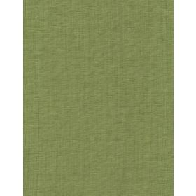 Rudge - 20 - Plain green fabric