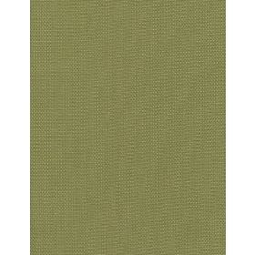 Samuel - 08 - Plain green fabric