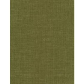 Nickleby - 24 - Plain green fabric