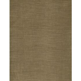 Motocomb - 1 - Plain cotton fabric in beige