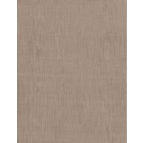 Motocomb - 0526 - Plain cotton fabric in light grey