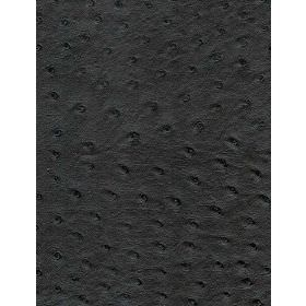 Stud - Ebony - Plain fabric in black