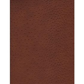 Stud - Chestnut - Plain fabric in brown