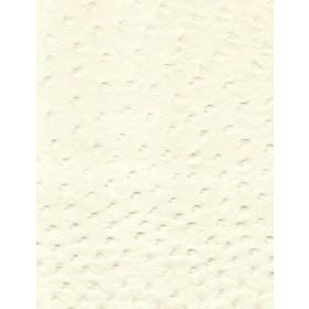 Stud - Ivory - Mottled fabric in white