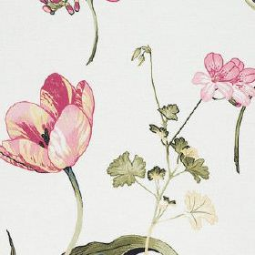 Buckingham - Summer - Dark dusky green and light, bright pink making up a light, delicate floral pattern on fabric made from 100% cotton