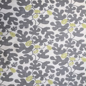 Fig - Grey Lime -