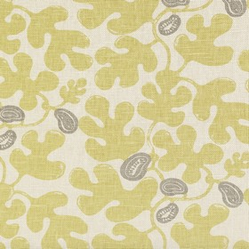 Fig - Lime Grey -