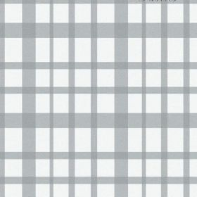 The Check - Ash - Simple steel grey checks over a bright white bleached linen fabric background
