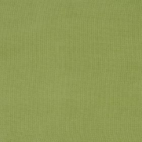 Eden - Palm - Swatch of fabric in a plain, bright apple green colour