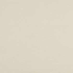 Jubilee - Sesame - Plain cotton fabric in a milky white colour