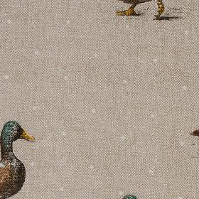 Burghley Novelties - Mallard - Small white polka dots scattered over a realistic mallard duck design on a light grey 100% cotton fabric back