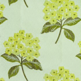 Kew Flora - Mimosa - Small light yellow blossoms arranged in bunches with olive green leaves over off-white polyester and cotton blend fabri