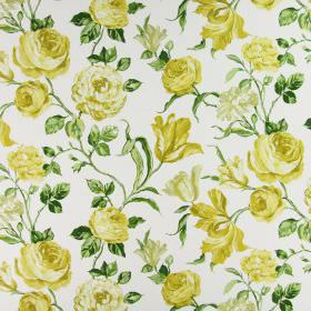 Portia - Mimosa - Realistic green leaves, stems and yellow-cream flowers on a white cotton fabric background