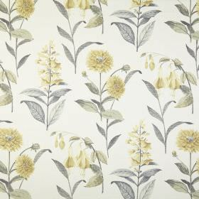 Bloomingdale - Chartreuse - Different species of pale yellow flowers printed with grey-green leaves on a white 100% cotton fabric background