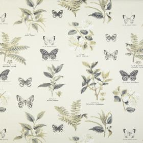 Botany - Chartreuse - Various different leaves and butterflies printed in grey and dusky green on fabric made from 100% cotton in white