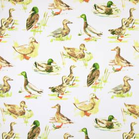 Mallard - Watercolour - Fabric made from off-white cotton, with a pattern of ducks in realistic colours and shading