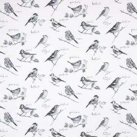 Garden Birds - Graphite - Common garden birds in shades of grey with a small amount of text on a white cotton fabric background