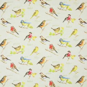 Garden Birds - Linen - Very pale grey cotton fabric, scattered with brightly coloured images of common garden birds, along with their names