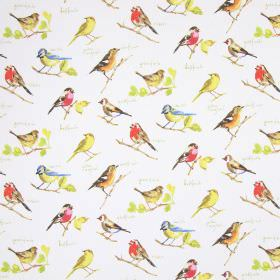 Garden Birds - Watercolour - Brightly coloured realistic common garden birds with some text on a fabric background made from white cotton