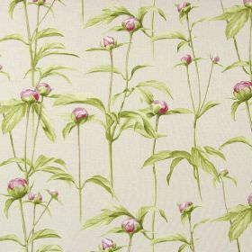 Clarendon - Rose - Rose pink flower buds printed as a pattern with shaded green leaves on white fabric made from cotton