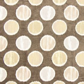 Carousel - Moleskin - Light brown spots on moleskin brown fabric