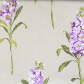 Stocks - Mulberry - Mulberry purple flowers blooming on light green fabric