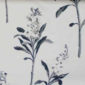 Stocks - Onyx - Onyx black flowers blooming on white fabric