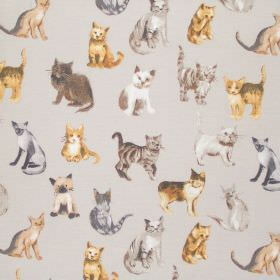 Cool Cats - Silver - Silver grey fabric with cats for children