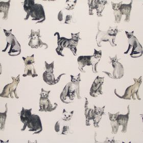 Cool Cats - Charcoal - Charcoal black fabric with cats for children
