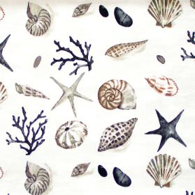Seashells - Driftwood - White fabric with dark blue grey and brown seashells