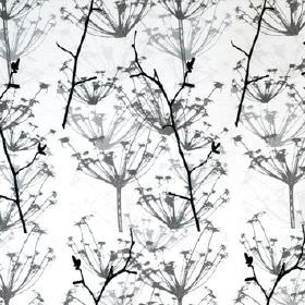 Ogras - Black White - White cotton fabric with grey and black line drawings of dandelion style flowers