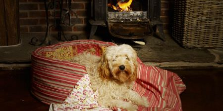 Elanbach -  Spice Route Fabric Collection - Salmon pink striped dog bed with yellow and salmon paisley interior, and a blanket with stripes and a floral pattern