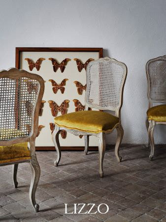 Lizzo -  Opera Fabric Collection - Shabby chic carved painted wood chairs with mesh backrests and gold velvet padded seats, with butterflies displayed in a brown wood frame