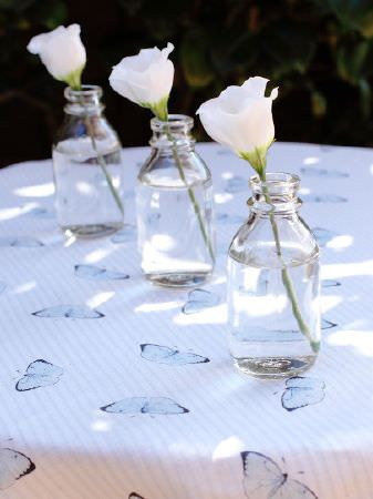 Peony and Sage -  Coastal Fabric Collection - Three white flowers placed individually in clear glass bottles on a table with light blue and white butterfly print fabric