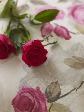 Prestigious Textiles -  Garden Party Fabric Collection - Close-up picture of white fabric with a detailed print of pink roses from the Garden Party fabric collection