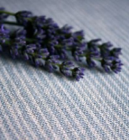 Sarah Hardaker -  Majolica Stripe Fabric Collection - Narrowly striped light blue and white fabric with a few lavender flowers