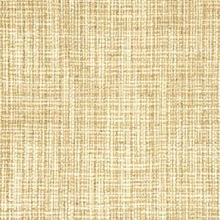 Threads -  Sumptuous Fabric Collection - Conventional design on a threaded fabric from the Sumptuous Fabric Collection in colour beige